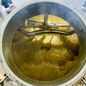 Belleville x Mondo Collab – Introducing Hey Neighbour. A photograph showing the inside of the mash tun including malt wheat and oats