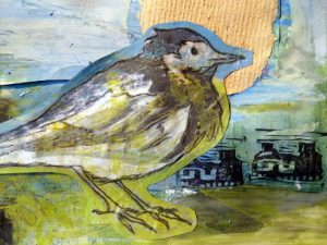 5 Ways to Brighten Your Winter Walk. Photograph of a collarge of a small bird with green, blue and pale yellow colours